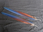 2 Camelot Macaw Parrot Tail Feathers