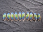 Camelot Macaw Parrot Wing Feathers